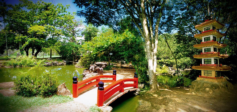 imagens jardim japones : imagens jardim japones:Jardim Japones Caldas Novas